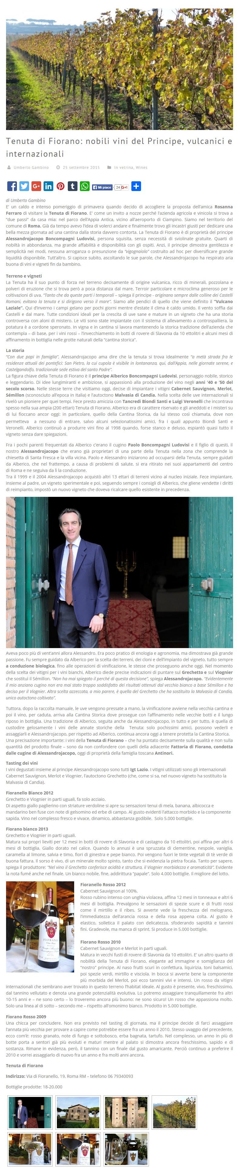 Rassegna stampa 2015 - Wining.it
